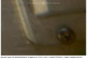 Phase One XT Rodenstock 32mm f/4 | Close Focus | Full shift stitch | Corner | f/11