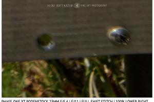 Phase One XT Rodenstock 23mm f/5.6 | Close Focus | Full shift stitch | Corner | f/11