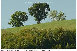 Filter Comparison Review | Sharpness | Wine Country Camera Polariser | 100% Center