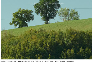 Filter Comparison Review | Sharpness | Wine Country Camera CPL + Grad ND + ND | 100% Center