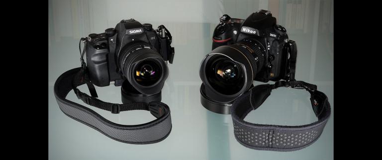 Nikon D800E vs Sigma SD1 Merrill