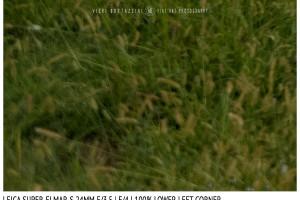 Leica Super-Elmar-S 24mm | Low Left | f/4