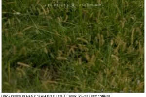 Leica Super-Elmar-S 24mm | Low Left | f/5.6