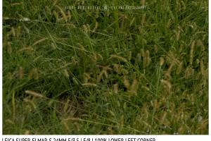 Leica Super-Elmar-S 24mm | Low Left | f/8