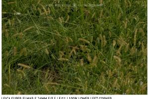 Leica Super-Elmar-S 24mm | Low Left | f/11