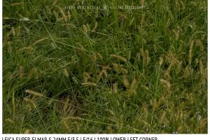 Leica Super-Elmar-S 24mm | Low Left | f/16