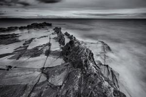 Arran's Fossil Sands (Scotland, 2016)
