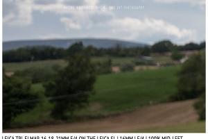 Leica Tri-Elmar-Elmar 16-18-21mm f/4 | 16mm | Close Focus | Mid-Left | f/4