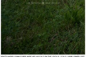 Voigtlander 15mm Super-Wide Heliar f/4.5 v. III | Infinity | Lower Left Corner | f/4.5