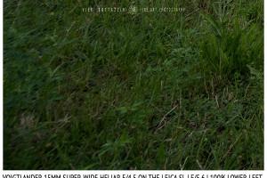 Voigtlander 15mm Super-Wide Heliar f/4.5 v. III | Infinity | Lower Left Corner | f/5.6
