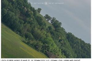 Leica Super-Vario-Elmar-SL 16-35mm | 35mm | Mid Right | f/8