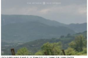 Leica Super-Vario-Elmar-SL 16-35mm | 24mm | Center | f/8