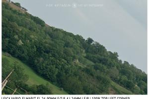 Leica Vario-Elmarit-SL 24-90mm | 24mm | Top Left | f/8