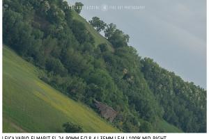 Leica Vario-Elmarit-SL 24-90mm | 35mm | Mid Right | f/4