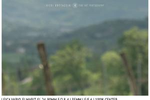 Leica Vario-Elmarit-SL 24-90mm | 35mm | Center | f/5.6