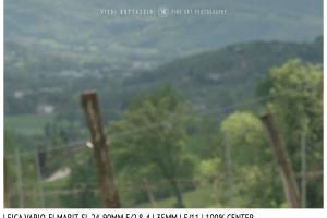 Leica Vario-Elmarit-SL 24-90mm | 35mm | Center | f/11