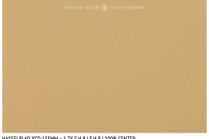 Hasselblad XCD 135mm + 1.7x | Close Focus | Center | f/4.8