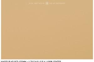 Hasselblad XCD 135mm + 1.7x | Close Focus | Center | f/5.6