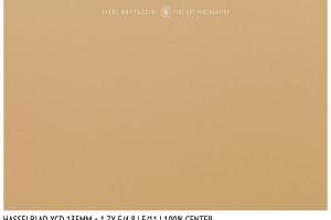 Hasselblad XCD 135mm + 1.7x | Close Focus | Center | f/11