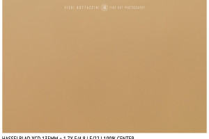 Hasselblad XCD 135mm + 1.7x | Close Focus | Center | f/22