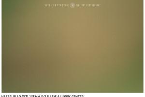 Hasselblad XCD 135mm | Close Focus | Center | f/5.6