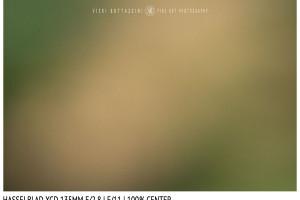 Hasselblad XCD 135mm | Close Focus | Center | f/11