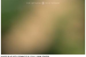Hasselblad XCD 135mm | Close Focus | Center | f/16