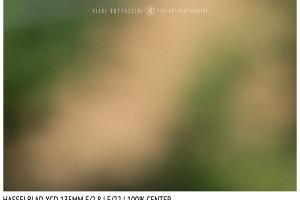 Hasselblad XCD 135mm | Close Focus | Center | f/22