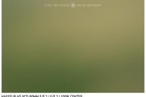 Hasselblad XCD 90mm | Close Focus | Center | f/3.2