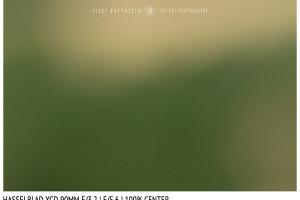 Hasselblad XCD 90mm | Close Focus | Center | f/5.6
