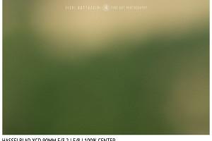 Hasselblad XCD 90mm | Close Focus | Center | f/8