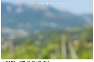 Hasselblad XCD 21mm | Close Focus | Center | f/4