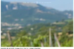 Hasselblad XCD 21mm | Close Focus | Center | f/5.6