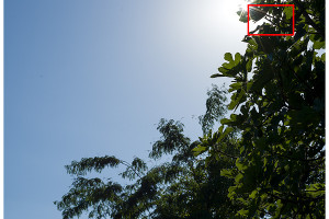 Hasselblad XCD 90mm | Flare & CA | Full Image | f/11