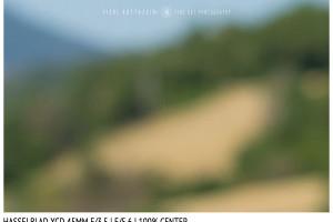 Hasselblad XCD 45mm | Close Focus | Center | f/5.6