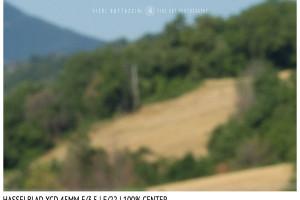 Hasselblad XCD 45mm | Close Focus | Center | f/22