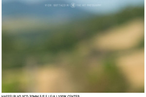 Hasselblad XCD 30mm | Close Focus | Center | f/4