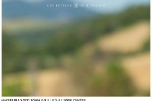 Hasselblad XCD 30mm | Close Focus | Center | f/5.6