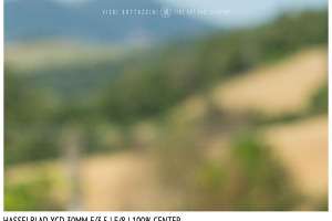 Hasselblad XCD 30mm | Close Focus | Center | f/8