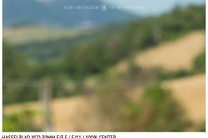 Hasselblad XCD 30mm | Close Focus | Center | f/11