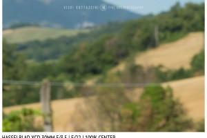 Hasselblad XCD 30mm | Close Focus | Center | f/22