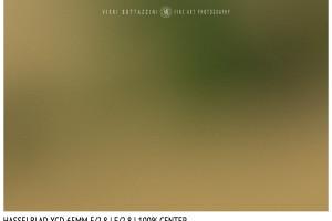 Hasselblad XCD 65mm | Close Focus | Center | f/2.8