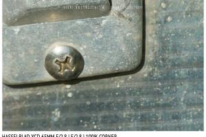 Hasselblad XCD 65mm | Close Focus | Corner | f/2.8