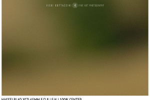 Hasselblad XCD 65mm | Close Focus | Center | f/4