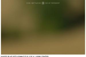 Hasselblad XCD 65mm | Close Focus | Center | f/5.6