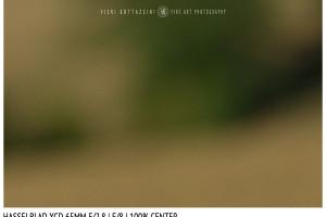 Hasselblad XCD 65mm | Close Focus | Center | f/8