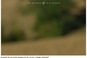 Hasselblad XCD 65mm | Close Focus | Center | f/16
