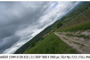 Voigtlander 15mm Super-Wide Heliar f/4.5 v. III | Infinity | Full Image | 2:1 Crop | f/11