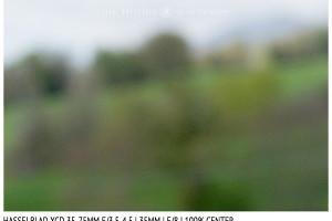 Hasselblad XCD 35-75mm | 35mm | Close Focus | Center | f/8