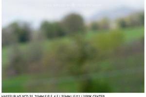 Hasselblad XCD 35-75mm | 35mm | Close Focus | Center | f/11